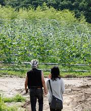 二本松農園