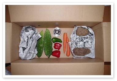 福島に送った野菜ボックス